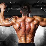 背筋(背中)を鍛える筋トレメニュー vol.1/男性は迫力ある背中を作り、女性はスタイリッシュな背中を実現
