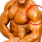 肩(三角筋)を鍛える筋トレメニュー vol.1/男性は肩幅を広げ、女性はボディラインを美しく