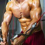 プロテインを飲むだけで筋肉はムキムキになるの?