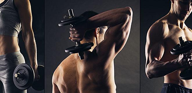 筋肉づくりに役立つプロテイン